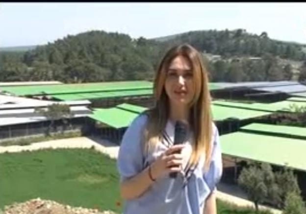 Türkiye'de hayvan çiftliğine ziyaret